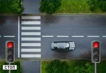 автомобиль и зебра